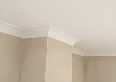 Painter and Decorator Services Dublin & Leinster
